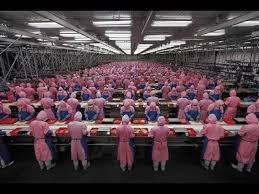 fabbriche senza operai